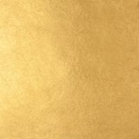 FOGLIA ORO ZECCHINO GIALLO KT 22 cm 8X8 25 DECALCO 25 FF