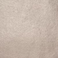 FOGLIA ARGENTO PURO 1000/000 cm 9,5X9,5  DECALCO 25 FF