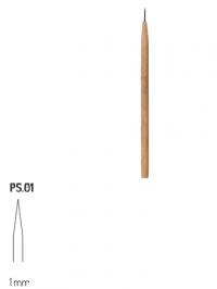 PS1 RGM
