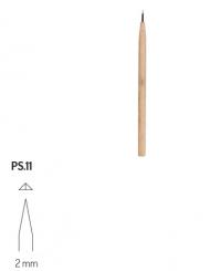 PS11 RGM